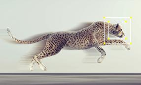 Szkolenie Motion Tracking