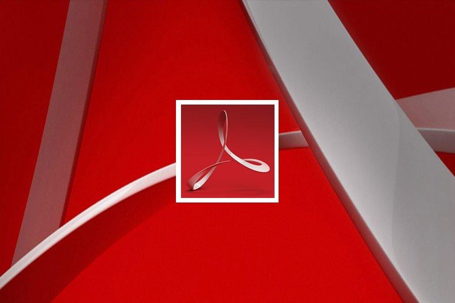 Adobe Acrobat 2020 Standard aktualizacja licencji COM ENG PC