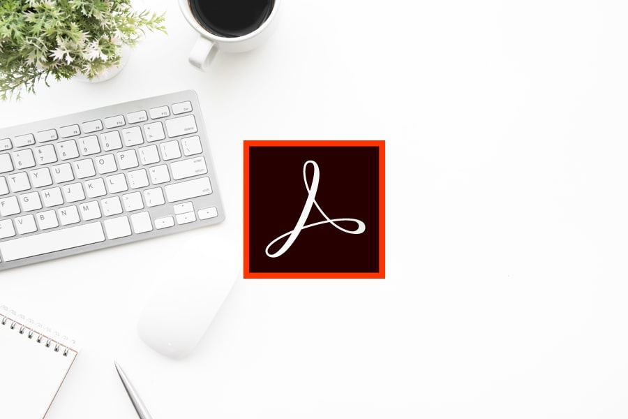 Adobe Acrobat DC Standard for Teams nowa subskrypcja GOV ENG PC