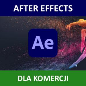 After Effects CC COM ENG