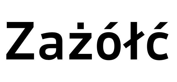 Czcionki | fonty z polskimi znakami