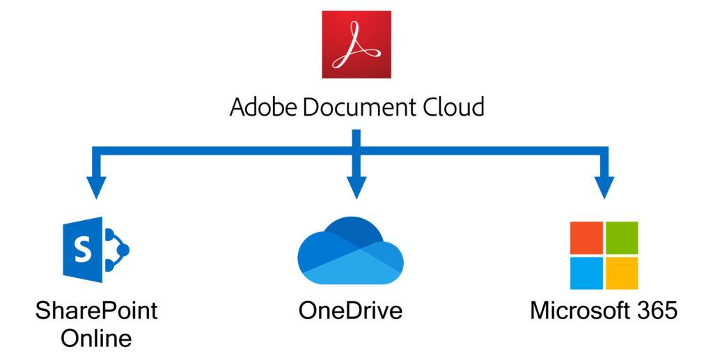 Adobe Creative Cloud dla Microsoft 365 wykres