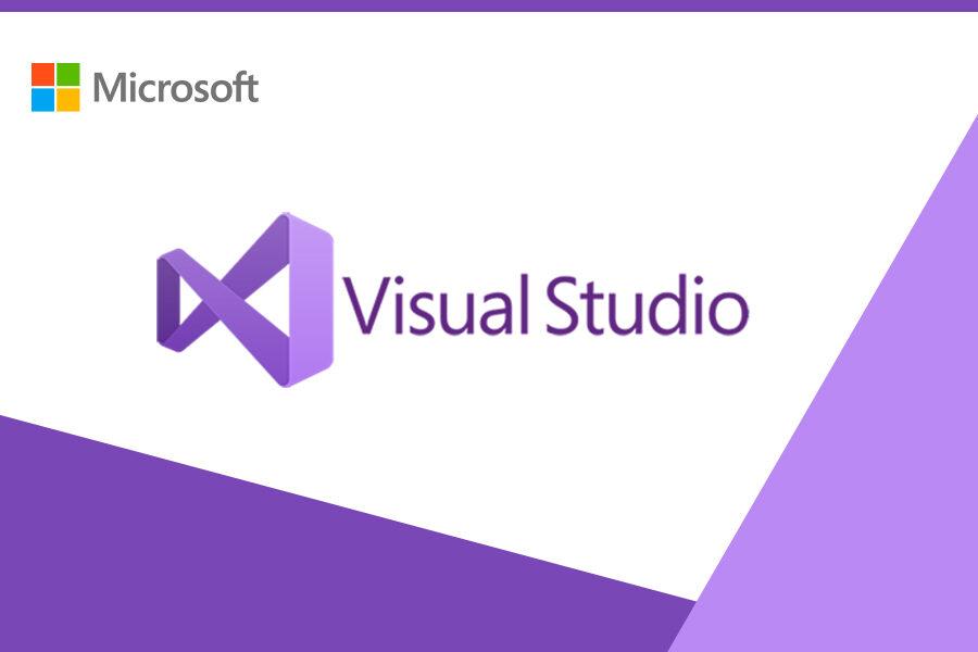 Visual Studio Professional 2019 PL